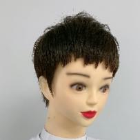 露耳超短发(共1集)