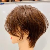 兰尼诗日式风格短发(共2集)